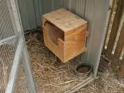 Nesting box for the chickens.