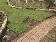 Laying turf inside the sandstone garden edging.