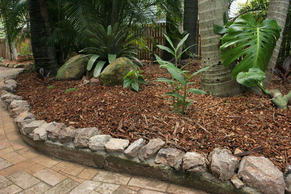 Graceville project 1 all you can eat gardens for Rock garden edging